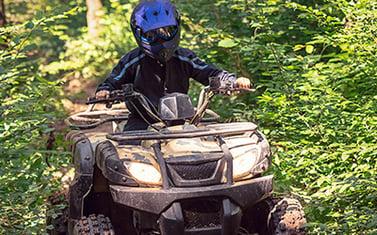 Fyrhjuling i skogen