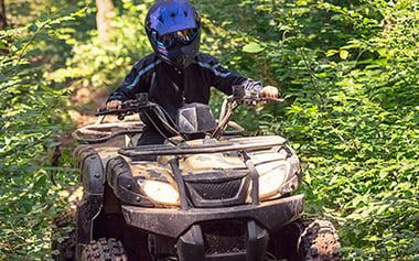 Fyrhjuling som kör utomhus i skogen